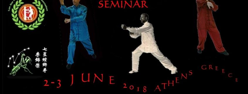 sifu-derek-frearson-seminar
